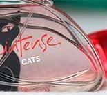 Colônia Intense Cats Boticário