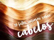 10 fatos curiosos sobre cabelos!