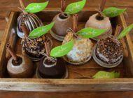 *Mary Ann Apple Factory: o paraíso das maçãs carameladas!