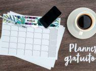 Para se organizar: planner gratuito Coisas de Diva