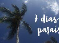 Tudo sobre minha viagem para Punta Cana!