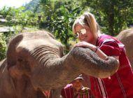 O que fazer em Chiang Mai, na Tailândia? Brinquei com elefantes!